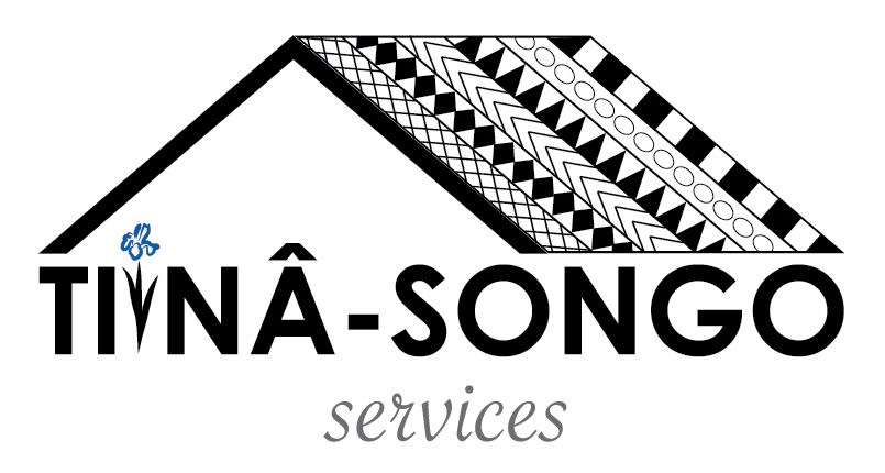 Tiinâ-Songo Services